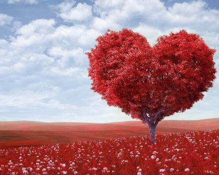 Gratis pakketje liefdesbomen